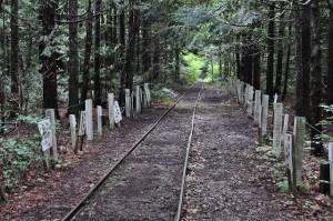 下北半島の鉄道遺構探訪(3)大畑森林鉄道